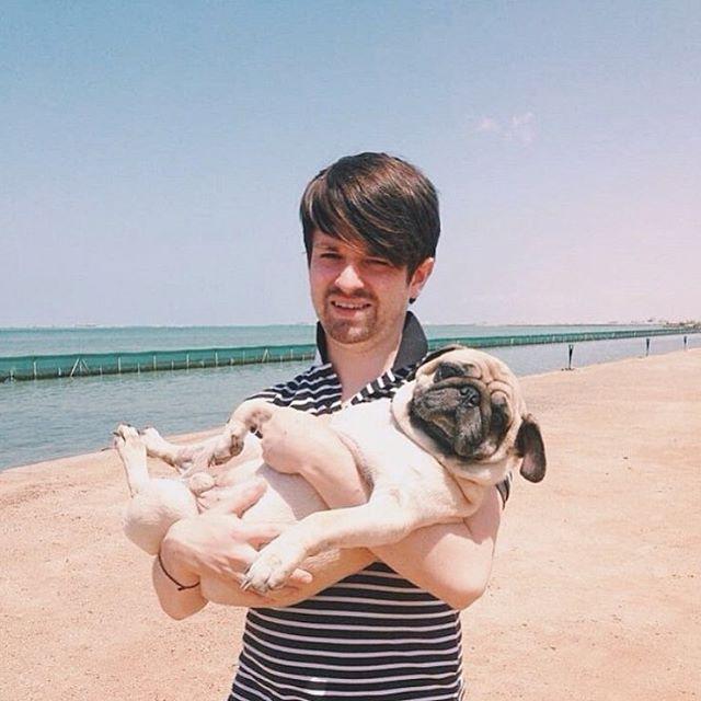 Happy international dog day to our son DobbiethePug internationaldogday pugsofinstagramhellip