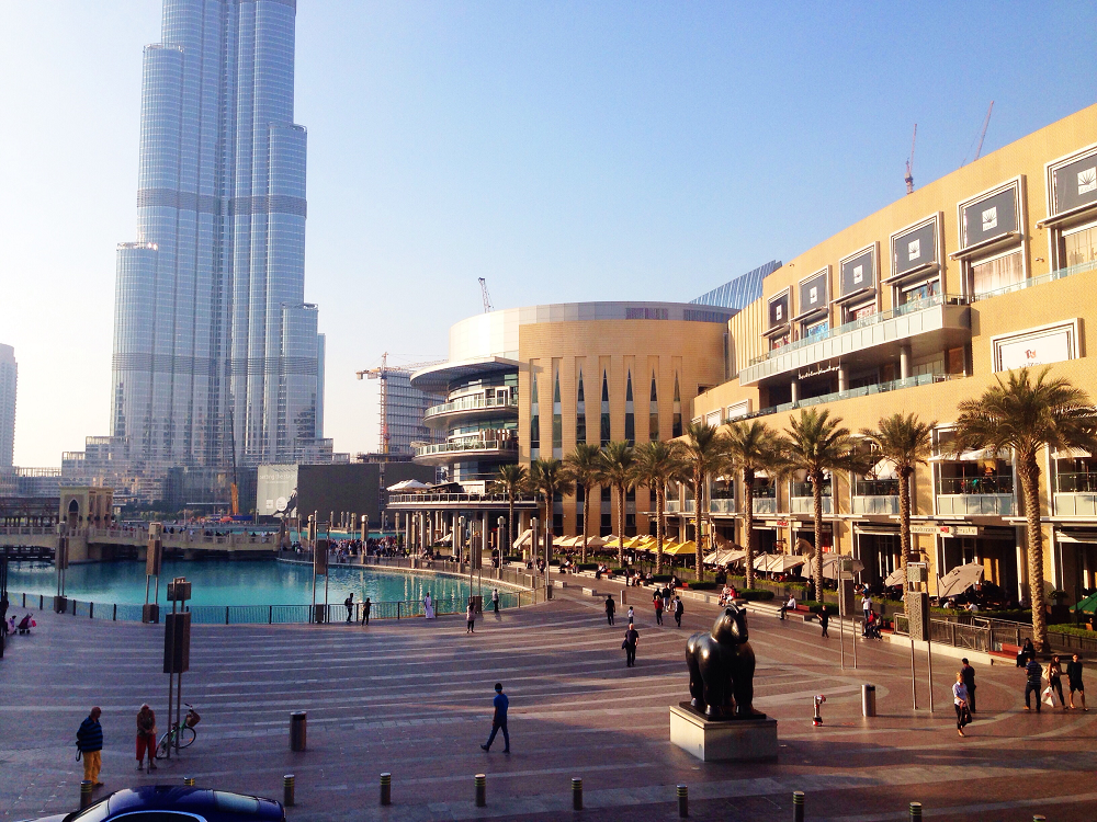 Dubai Mall View
